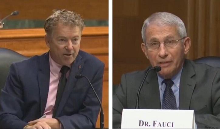 BOOM! Senator Rand Paul: 'Dr. Fauci Könnte Für Die Gesamte Pandemie Verantwortlich Sein '