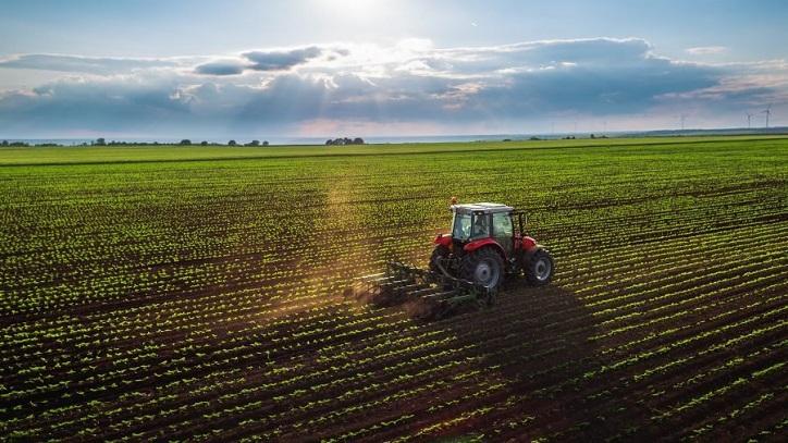 """Die britische Regierung will """"alte Bauern"""" loswerden, die gegen ihren """"Klimawandel"""" -Scherz resistent sind!"""