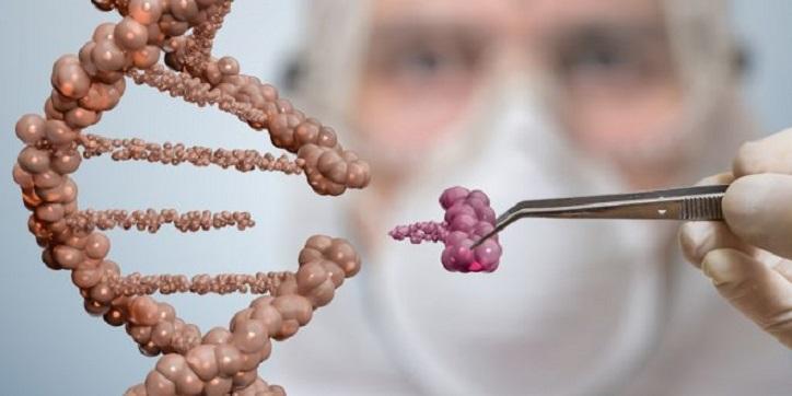 100 Mio. Dollar für genetisches Ausrottungsprogramm: Der Gene Drive kommt