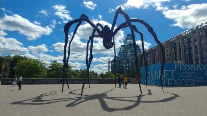 Wird die Hydra eine riesige Spinne?